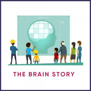 The Brain Story Training