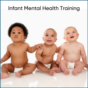 infant mental health training